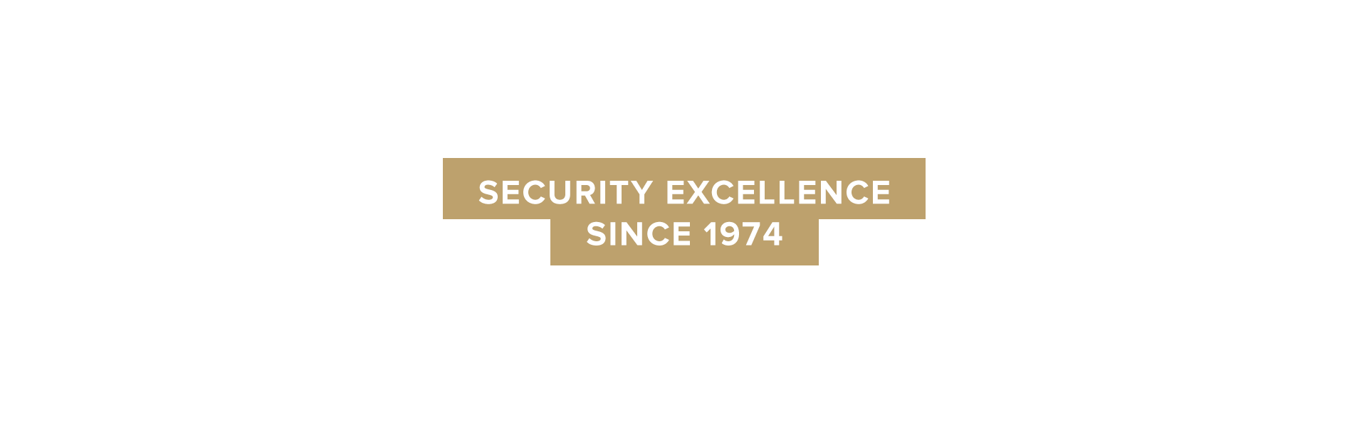 security excellence